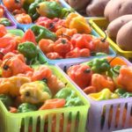 Eau Claire Downtown Farmer's Market closes for season – WEAU